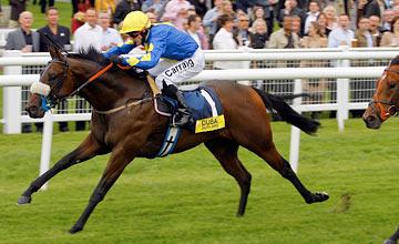 Caspar Netscher - Newbury 17.09.2011