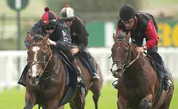 Workforce (left, Ryan Moore) - Dux Scholar (right) - Sandown - September 20