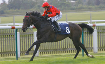Mohedian Lady - Newmarket 22/09/2011