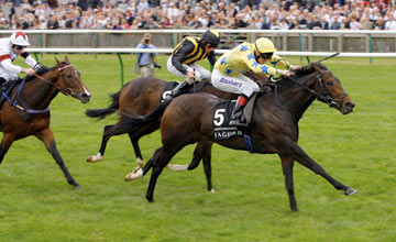Lightening Pearl - Newmarket - 24/09/2011