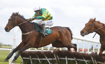 Alderwood - Fairyhouse 08/04/2012