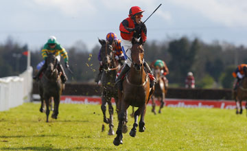Lion Na Bearnai - Fairyhouse 09/04/2012