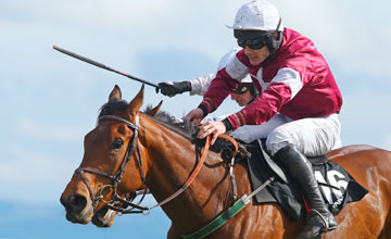 Rogue Angel -Fairyhouse 09/04/2012