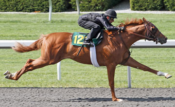 It's lot 123 at Keeneland two-year-old in training sale
