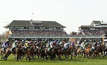 Grand National holding pic 1 (2011)