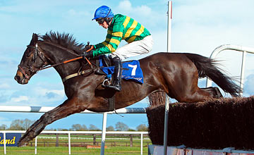 Bob Lingo - Fairyhouse 10.04.2012