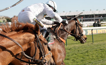 Cape Tribulation - Aintree 12/04/2012