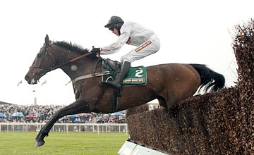 Finians Rainbow - Aintree 13.04.2012