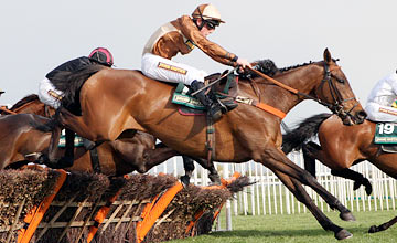 At A Glance - Aintree 13.04.2012
