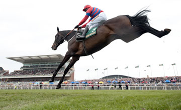 Sprinter Sacre - Aintree 14.4.12
