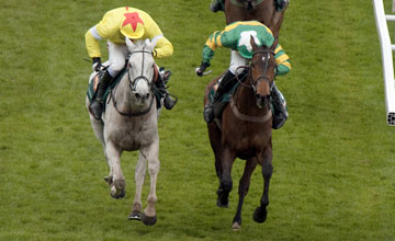 Neptune Collonges - Grand National Aintree 14.4.12