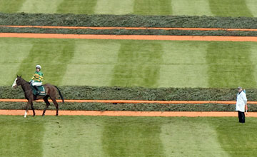 Synchronised- - Grand National Aintree 14.4.12