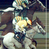 Grand National Photo Finish