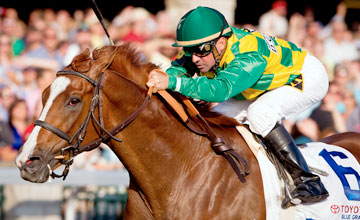 Dullahan - wins the Toyota Bluegrass Stakes at Keeneland 4.14.2012