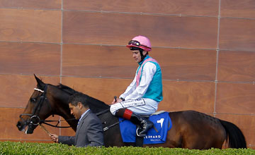 Famous Name - Leopardstown Photo: Patrick McCann 15.04.2012