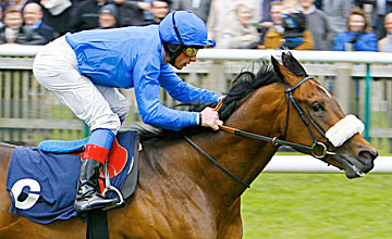 Mariner's Cross - Newmarket 19.4.12