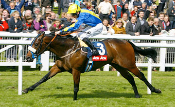 Caspar Netscher: second best three-year-old colt on official ratings