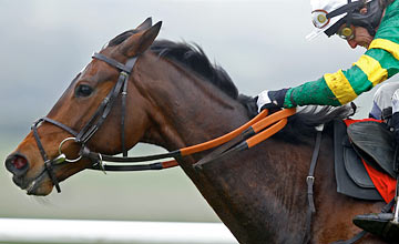 Alderwood - Punchestown 24.04.2012