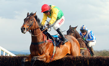 Sizing Europe - Punchestown 24.04.2012