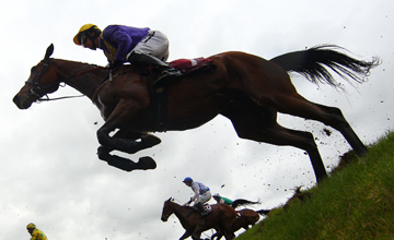 Uncle Junior - Punchestown - 26.04.2012