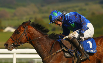 Hurricane Fly - Punchestown - 27.04.2012