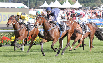 Atlantic Jewel wins All-Aged Stakes - Randwick April 2012