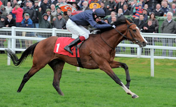 Imperial Monarch Sandown 28/04/2012