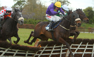 Hisaabaat - Punchestown 28/04/2012
