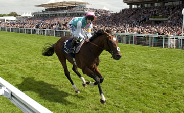 Frankel comes home in splendid isolation in the Sussex Stakes