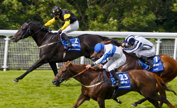 Hawkeyethenoo - Goodwood - 4/8/2012