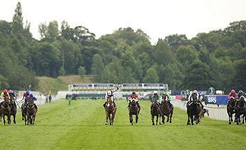 Nunthorpe Stakes - York - August 2011