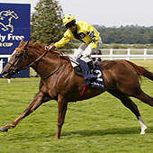 Mince - Matt Chadwick - Shergar Cup - Ascot 2012