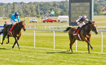 Mount Athos - Newbury - 18.8.12