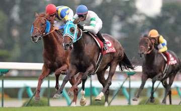 Fumino Imagine (white silks) wins the Sapporo Kinen