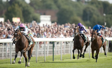 Frankel york 22/08/2012