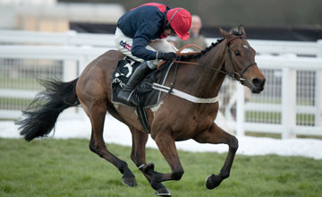 Bobs Worth 01/12/2012
