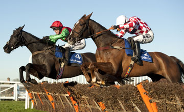 Taquin Du Seuil Sandown 07/12/2012