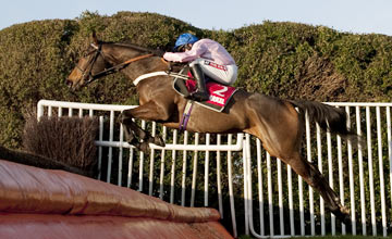 Captain Conan - Sandown - 08.12.12