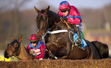 Sprinter Sacre