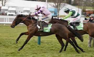 Zarkander Cheltenham 15/12/2012
