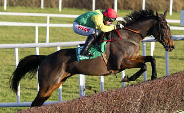 Sizing Europe - Leopardstown 27.12.12