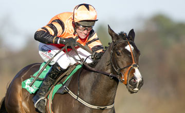 Jezki - Leopardstown 27.12.12