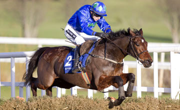 Hurricane Fly - Leopardstown 29.12.12