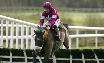 Bog Warrior - Punchestown 31.12.12