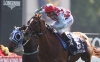 Red Cadeaux Sha Tin 091212
