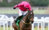 Monksland on course for Leopardstown return