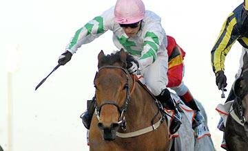 Hitchens (Silvestre De Sousa) wins the Al Shindagha Sprint - 03.02.2012