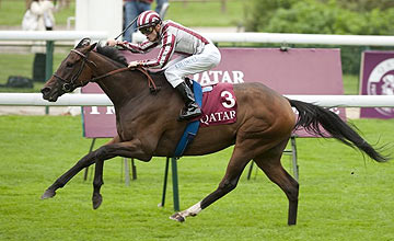 Cirrus Des Aigles - Prix Dollar - Longchamp - 02.10.10