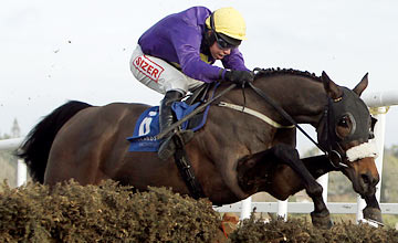 Hisaabaat - Leopardstown 12.02.2012