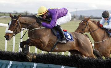 Galileos Choice - Fairyhouse 15/02/2012